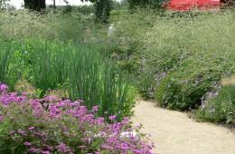 Gartenplanung & -beratung